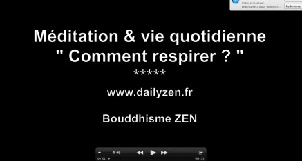 vid os sur le bouddhisme et la m ditation zen daily zen. Black Bedroom Furniture Sets. Home Design Ideas