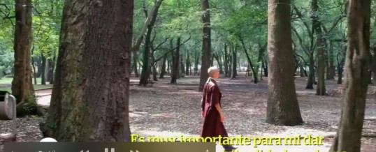 VIDEO – Meditation and interviews in parks, Mexico – September 2018